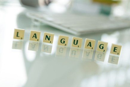 Tradukisto Language